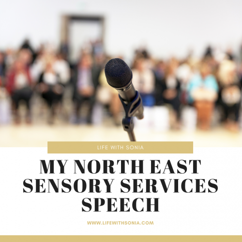 My North East Sensory Services Speech